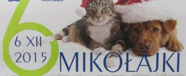 """""""Mikołajki dla schroniska"""""""